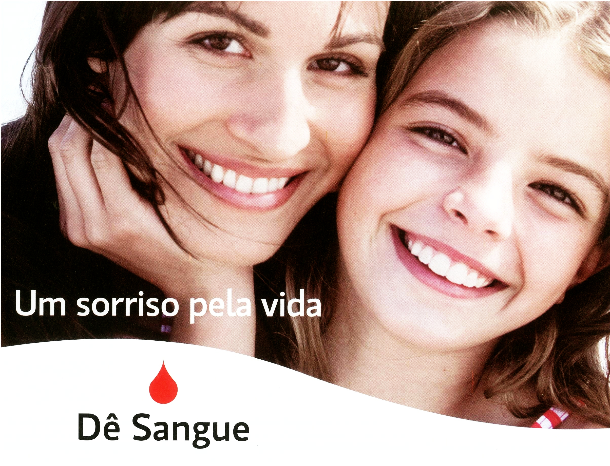 Sangue-2013